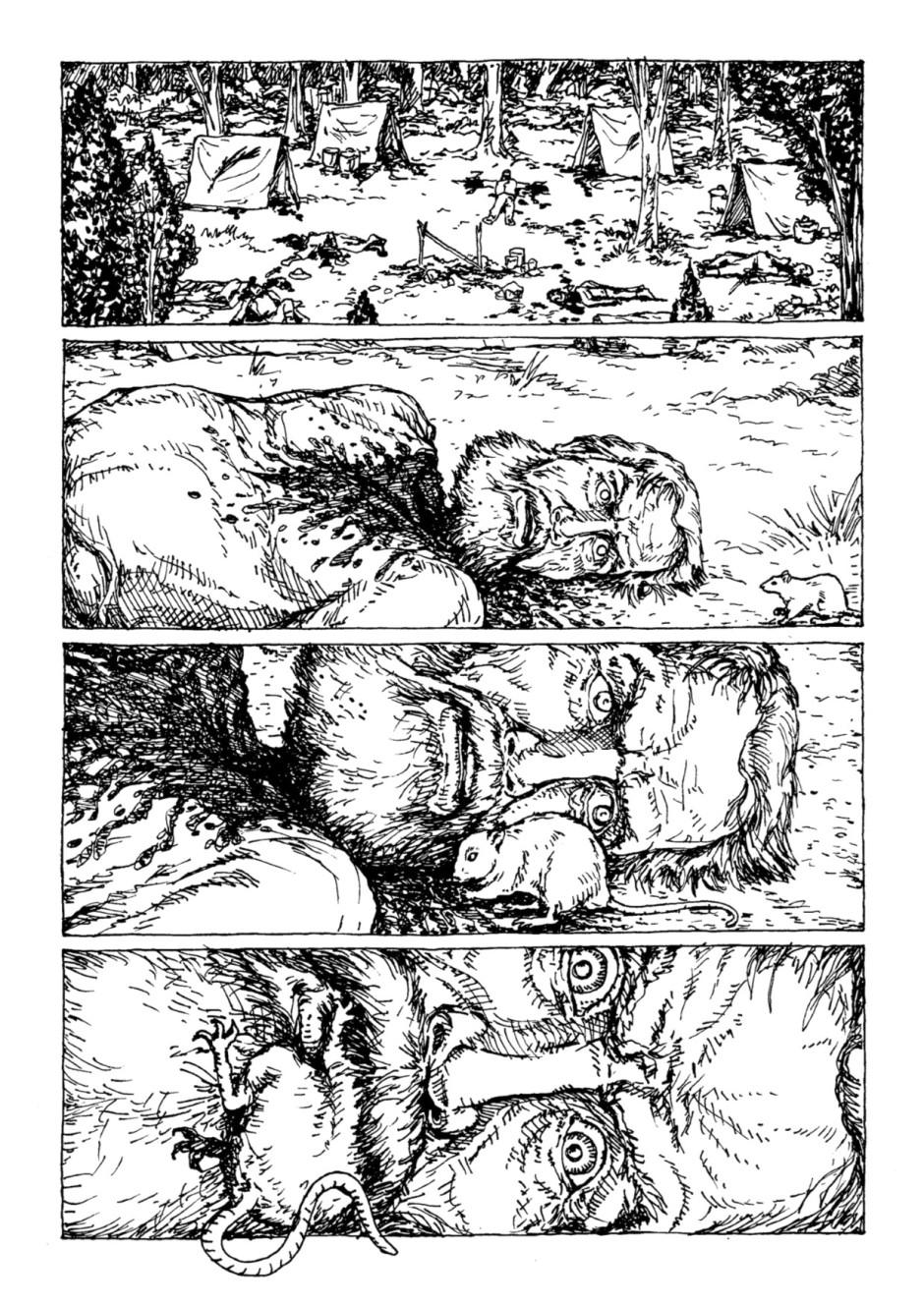 Página final