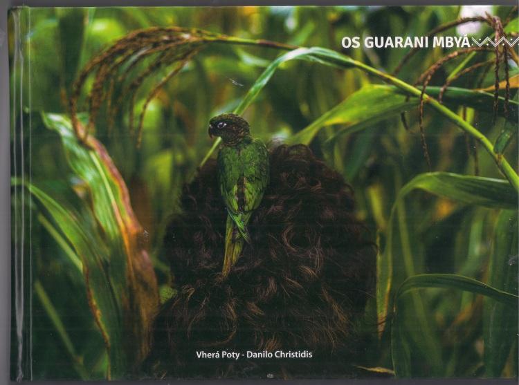 capa do livro os guarani mbyá