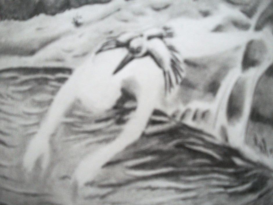 leyenda del jurunda, el martin pescador
